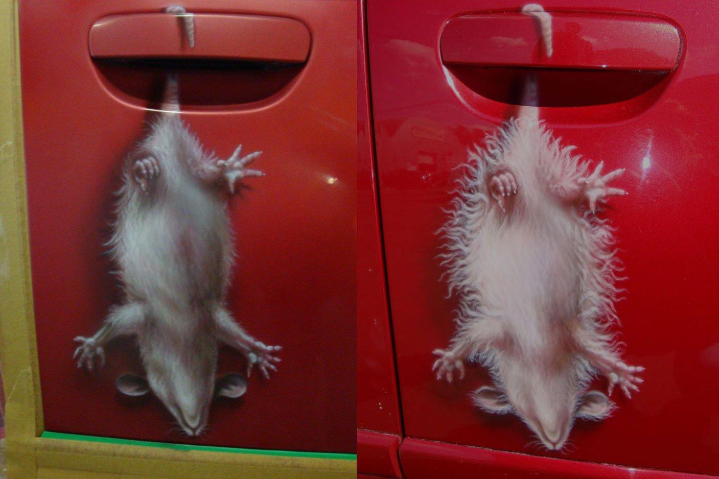 аэрография мыши на машине