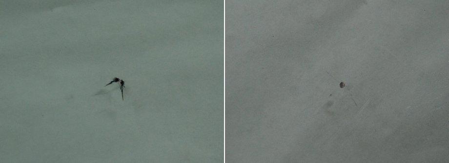до и после стекло